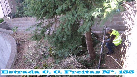 Estrada C. C. Freitas Nº. 155