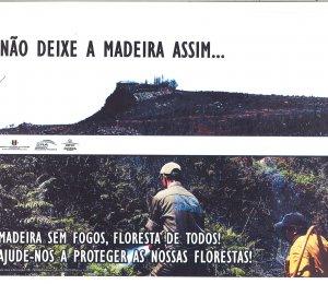 NÃO DEIXE A MADEIRA ASSIM...